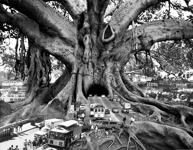 Thomas-Barbey-1